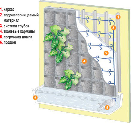 Фитомодуль для вертикального озеленения