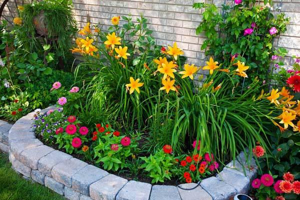 Ограждения из цветов