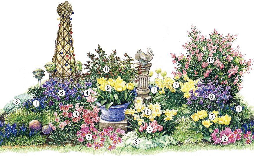Какие цветы посадить осенью, чтобы цвели весной