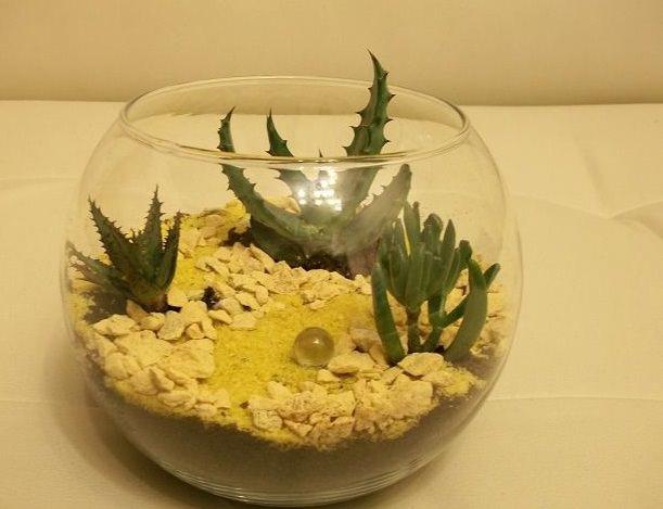 Изготовление флорариума из стекла