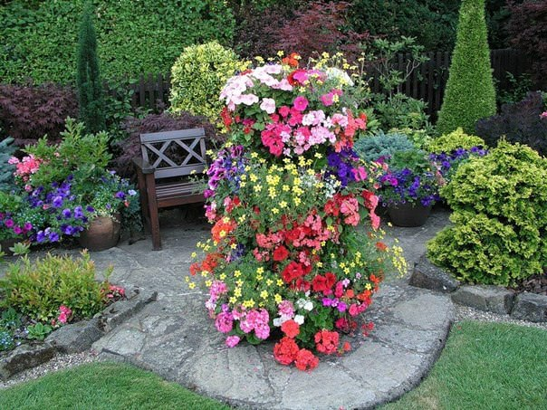 Варианты цветников фото