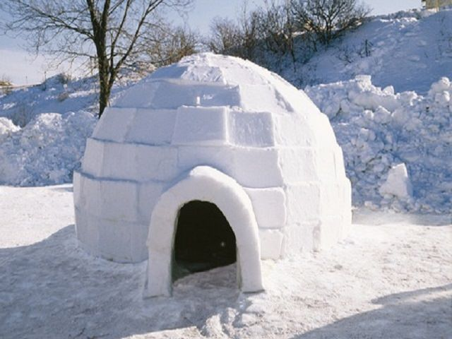 Как сделать ловушку из снега?