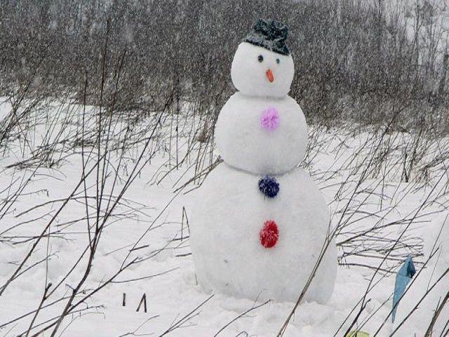 Какие фигуры можно сделать из снега?