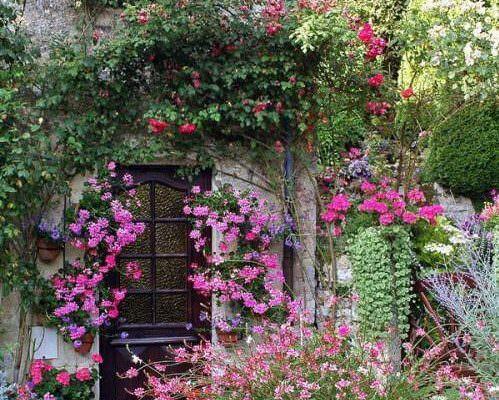Сад огород цветник