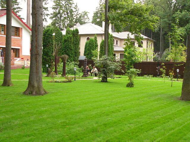 Дизайн газона перед домом