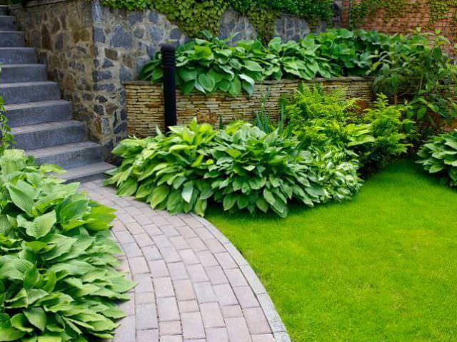 Украсить подход к дому газон