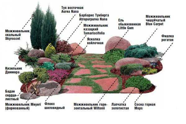 Схема рокария
