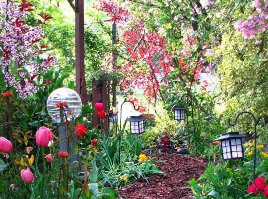 Чем выложить садовые дорожки фото