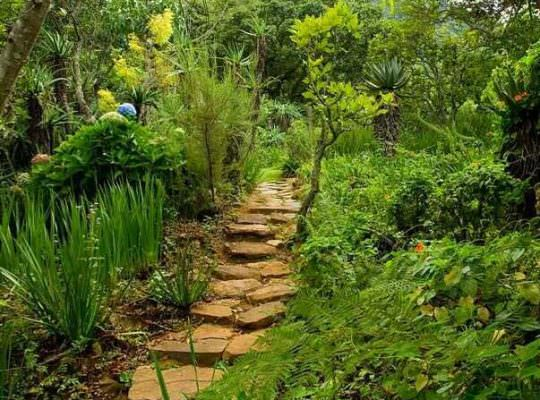 Форма для Садовой дорожки