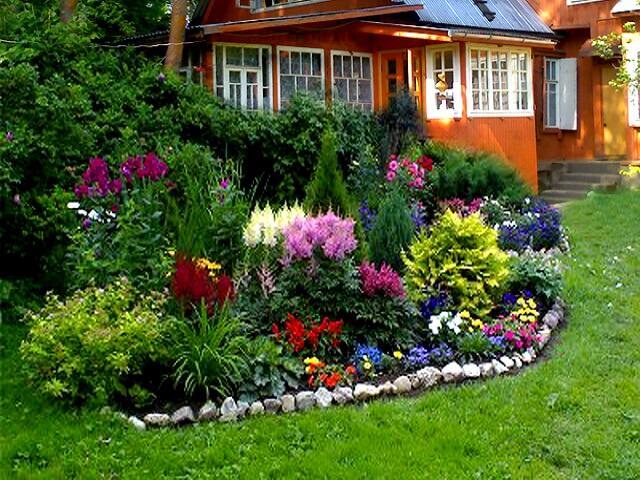 Яркий цветник возле частного дома