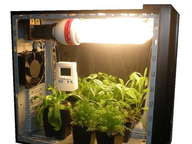 Бокс для выращивания растений 2