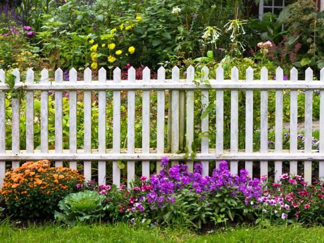 Какое расстояние между соседями забор?