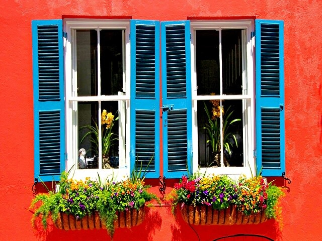 Цветы под окнами со ставнями