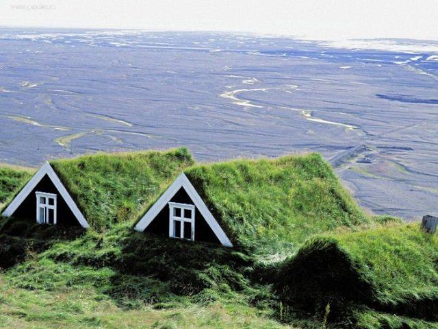 Три дома с озелененными крышами