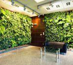 Вертикальное озеленение в холле