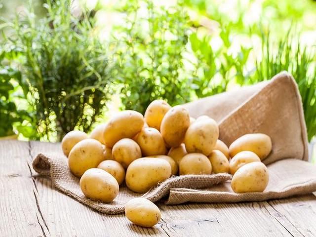 Картофель лежит на столе