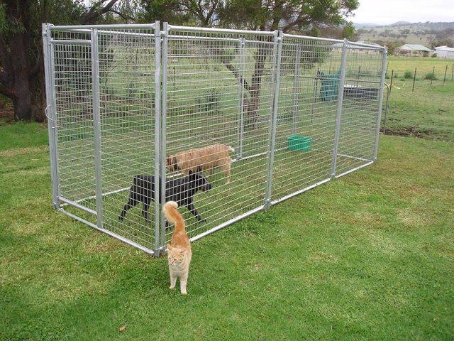 Як построїти вольєр для собаки