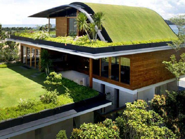 Дом с озелененными крышами