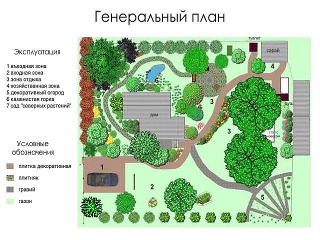 План озеленения участка