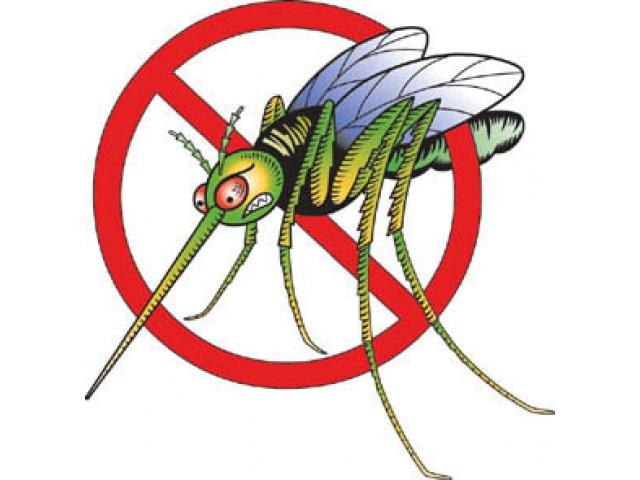 как защититься от комаров на даче