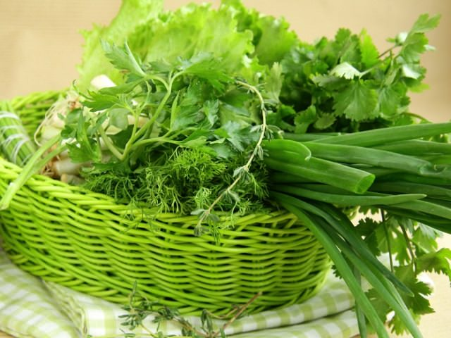 Корзина с зеленью, выращенной в теплице