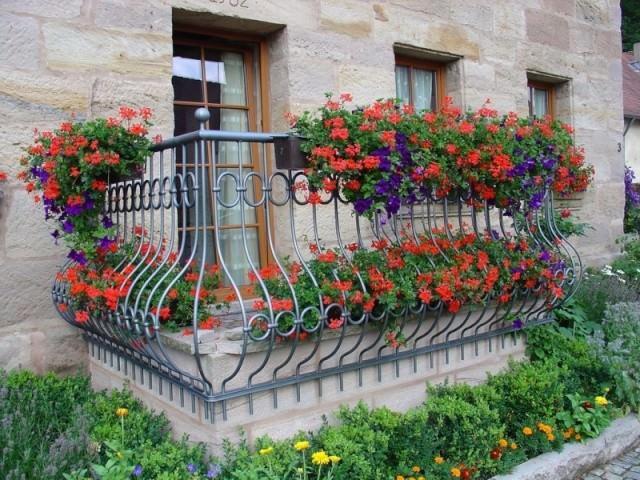 Идеи для озеленения балкона