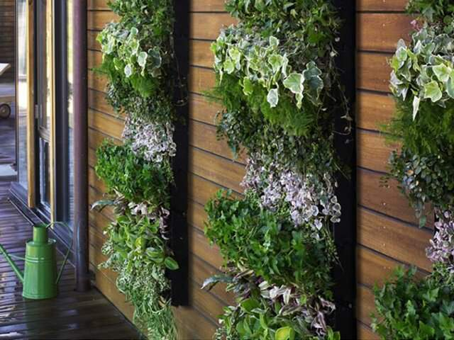 Озеленение балкона и лоджии сделать самим.