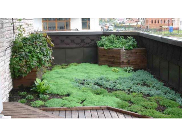 украшение лоджии растительностью