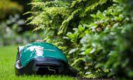 Робот газонокосилка у куста