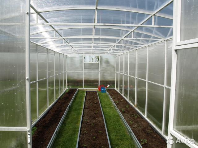 Теплица бизнес план овощи бизнес план пример экотуризм
