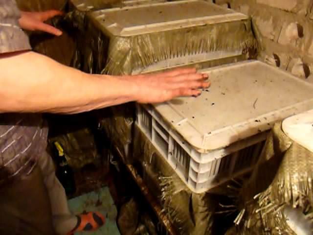 Устройство компостного бака