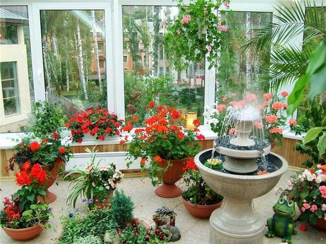 оформление зимнего сада