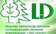 """Компания """"ЛД-групп"""""""