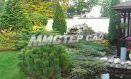 Компания ландшафтного дизайна Мистер сад