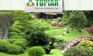 Компания ландшафтного дизайна TOPIAR