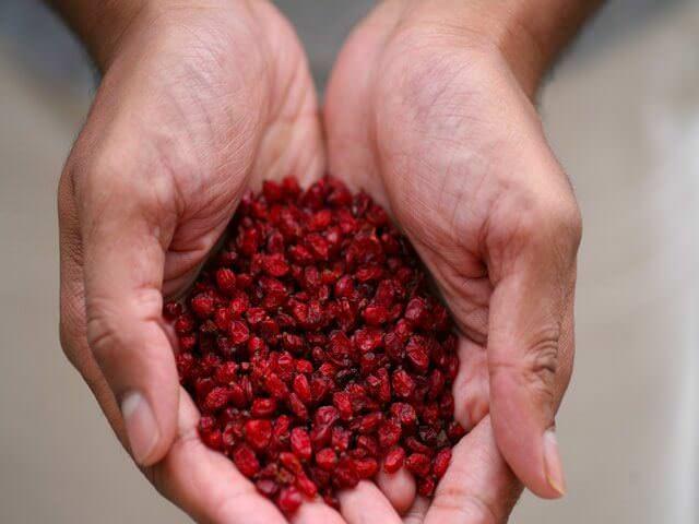 Сушеные ягоды в руках