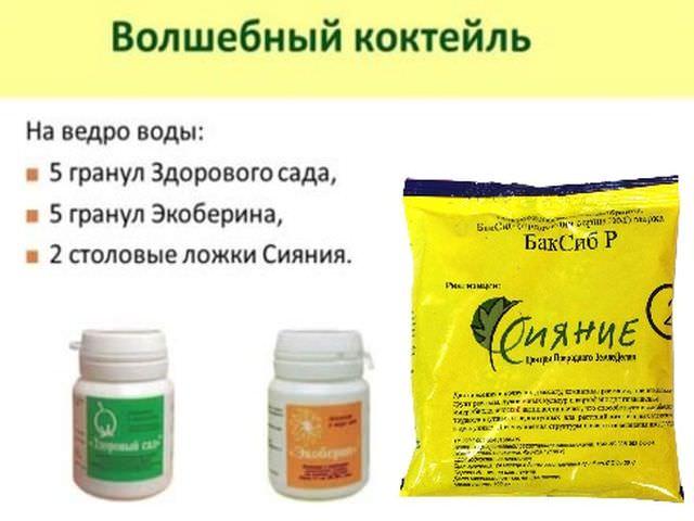 Препарат сияние 2