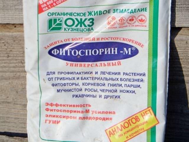 Фитоспорин-М для борьбы с болезнями растений
