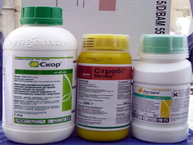 Химические препараты для защиты растений