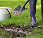Внесение известковых удобрений в грунт
