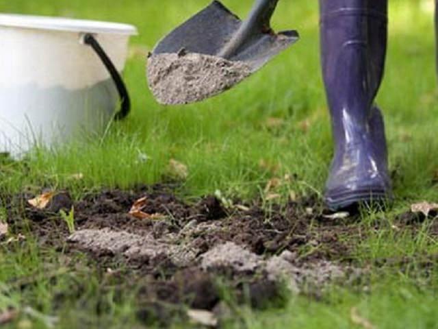 Обогащение почвы