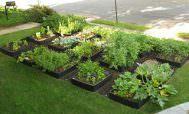 Клумбы для растений