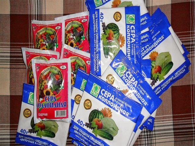 Препараты для защиты плодовых