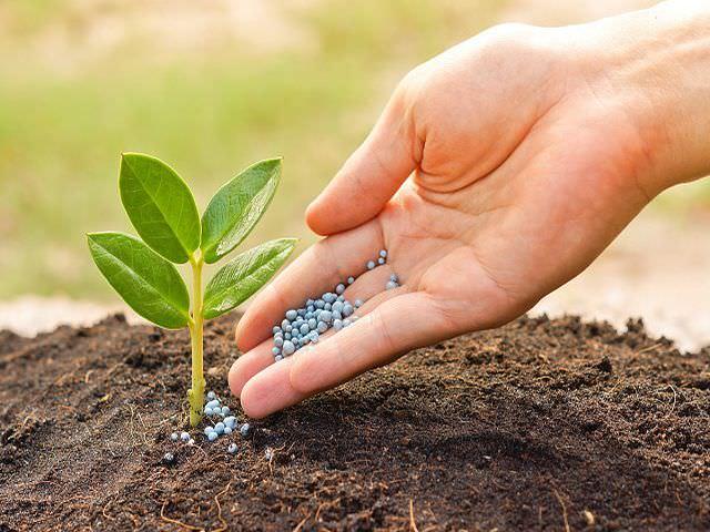 Добавление питательных веществ в почву