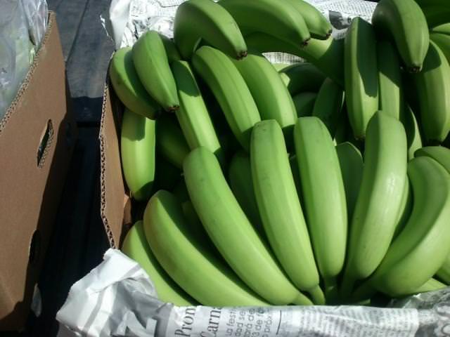 Подкормка кожурой банана