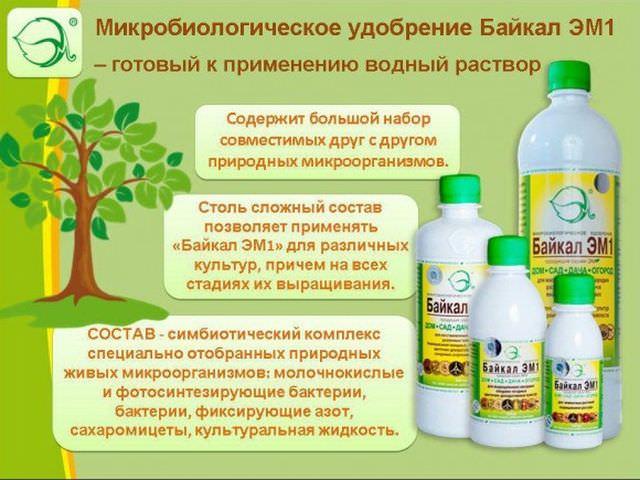 Водный раствор для растений