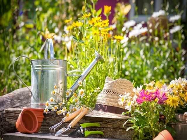 Яркий летний сад