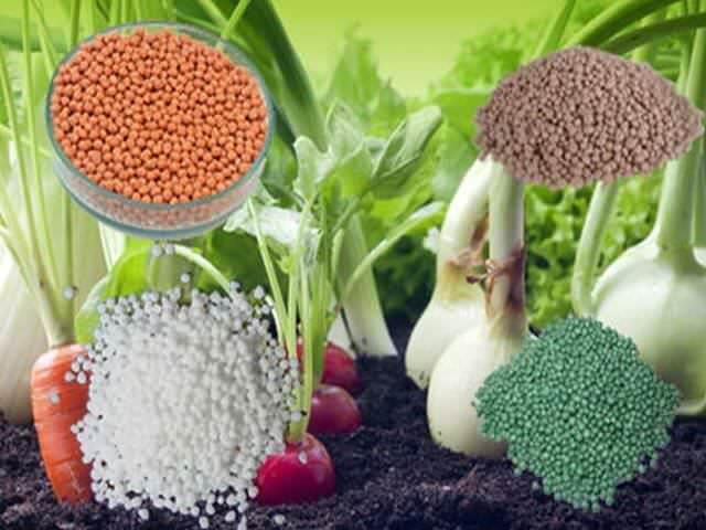 Минеральные удобрения для подкормки растений