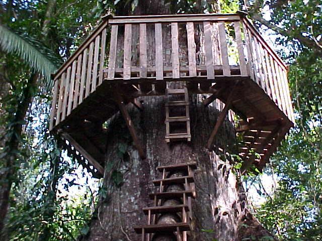 Смотреть схемы домика на дереве